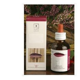 Prunus Spinosa 50ml Stv